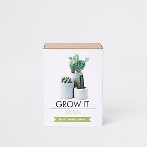 Grow It Cactus – Cactus à faire pousser