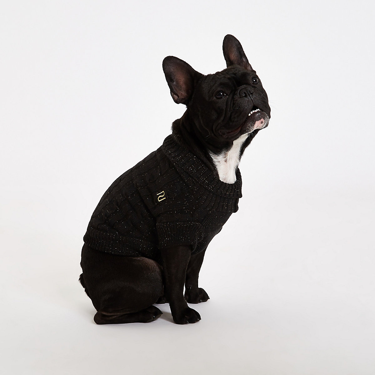 RI Dog Black dog roll neck jumper
