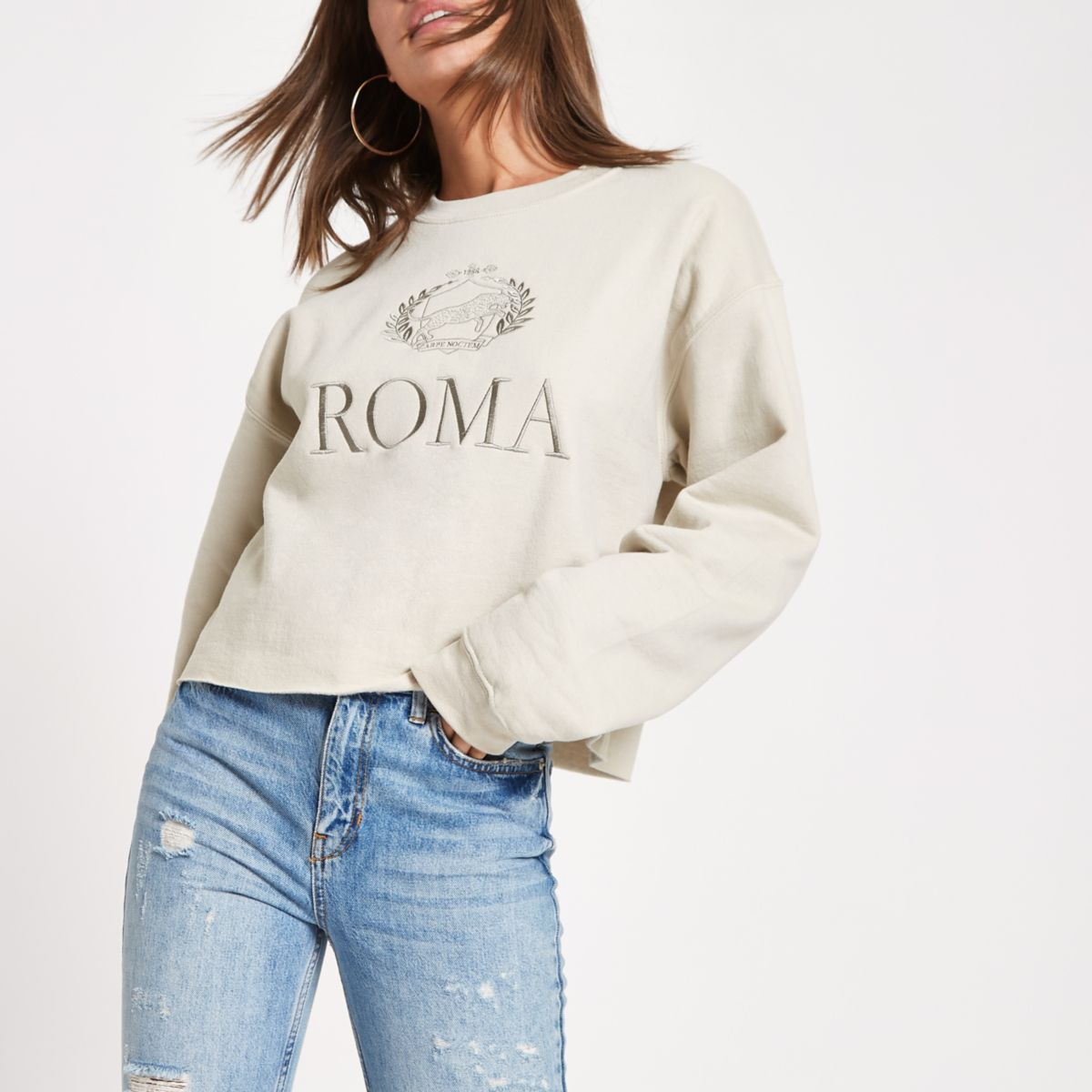 Beige 'Roma' print embroided sweatshirt