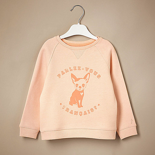 Mini girls dog print jumper