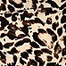 Girls brown leopard print bardot top