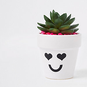 White heart face artificial succulent pot