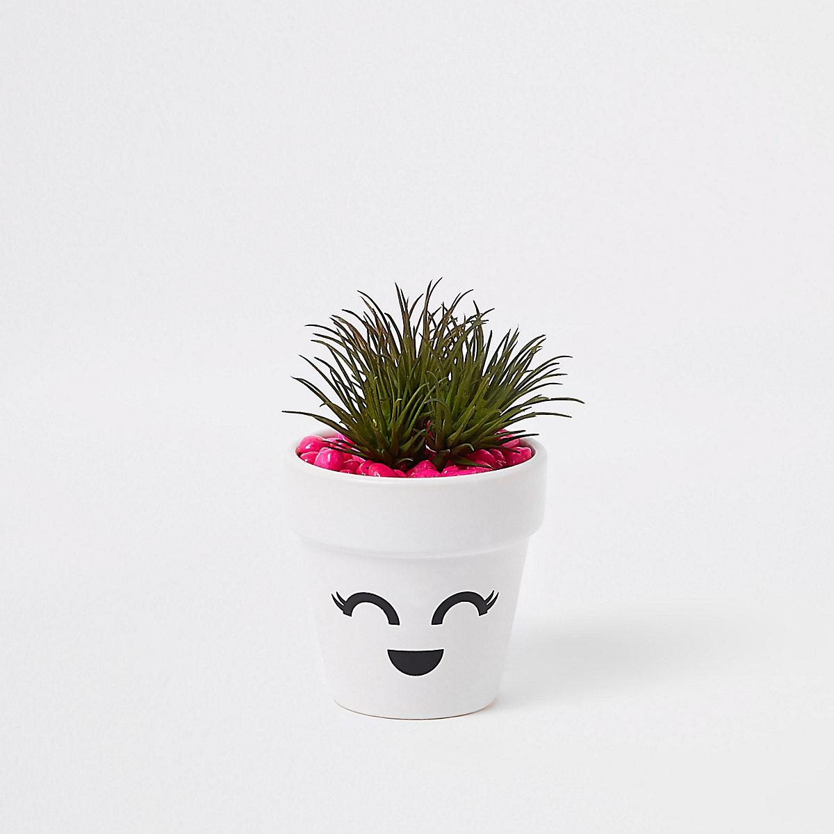 White face eyelashes artificial succulent pot