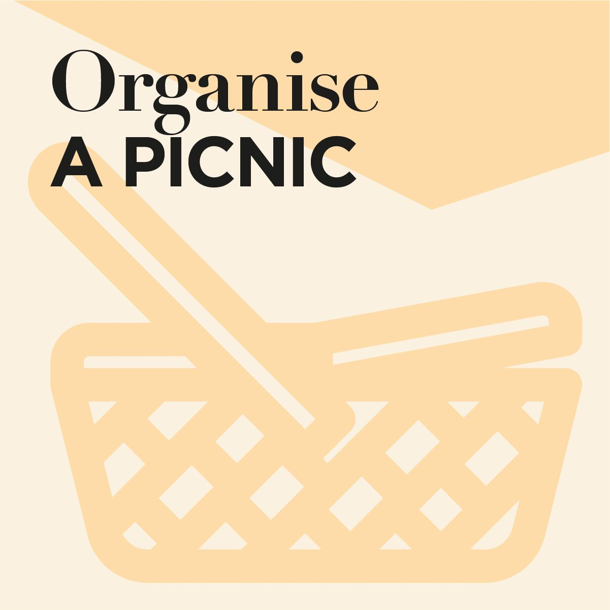 Organise a picnic